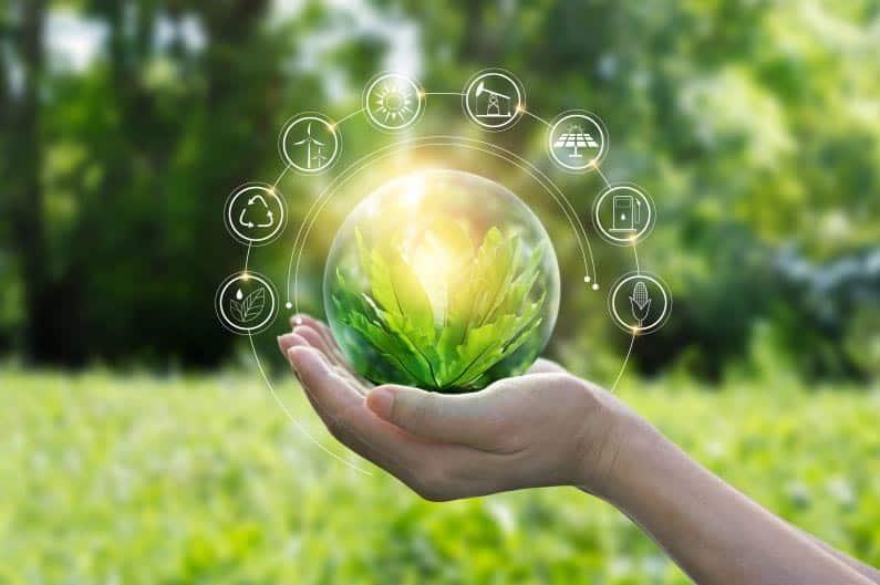 la traducción profesional aplicada al sector de la ecología